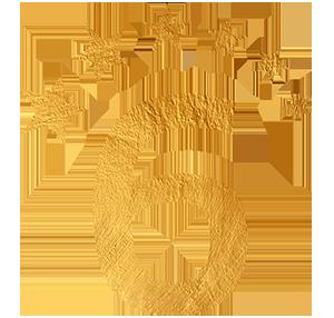 Clube 6 Estrelas Ouro