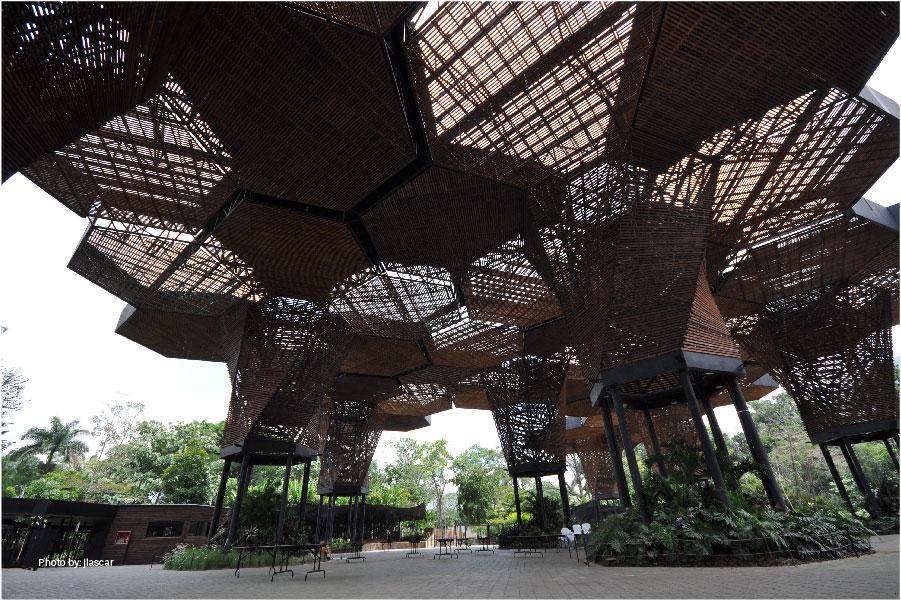 Orquideorama del Jardín Botánico Joaquín Antonio Uribe