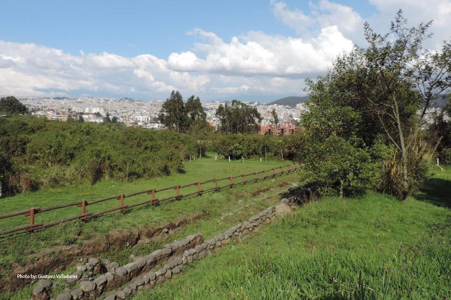 El Parque Rumipamba