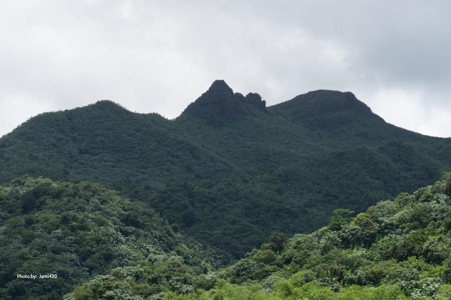 Vista desde la Torre Yokahú