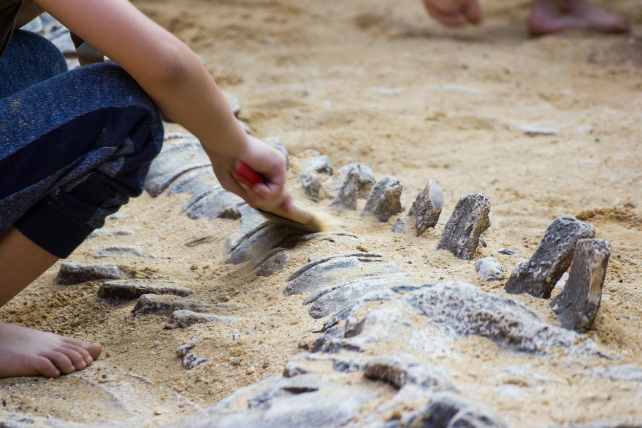 Criança cava restos de dinossauros no Museum for the Children em Salvador, Brasil.