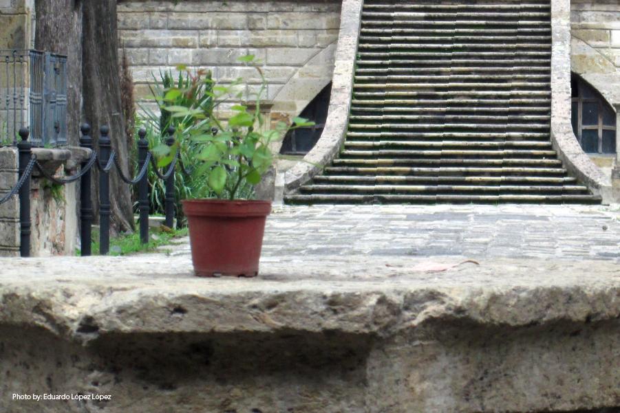 Escalones del Panteón de Belén, en Guadalajara México.
