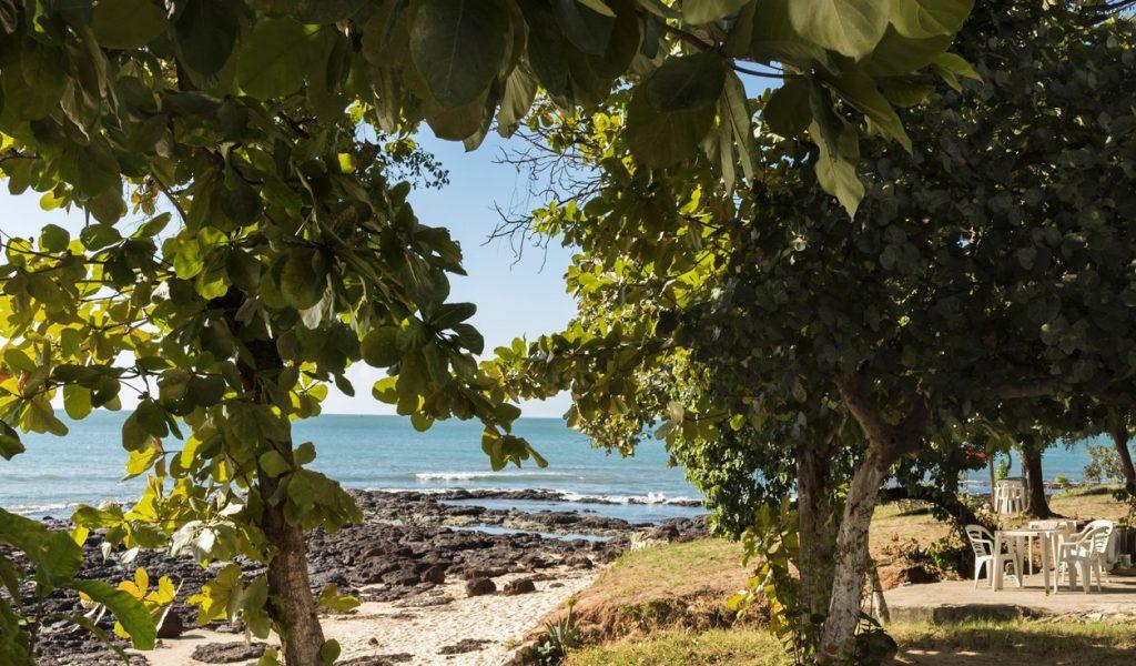 Árvores e praia na Avenida Beira Mar, Fortaleza