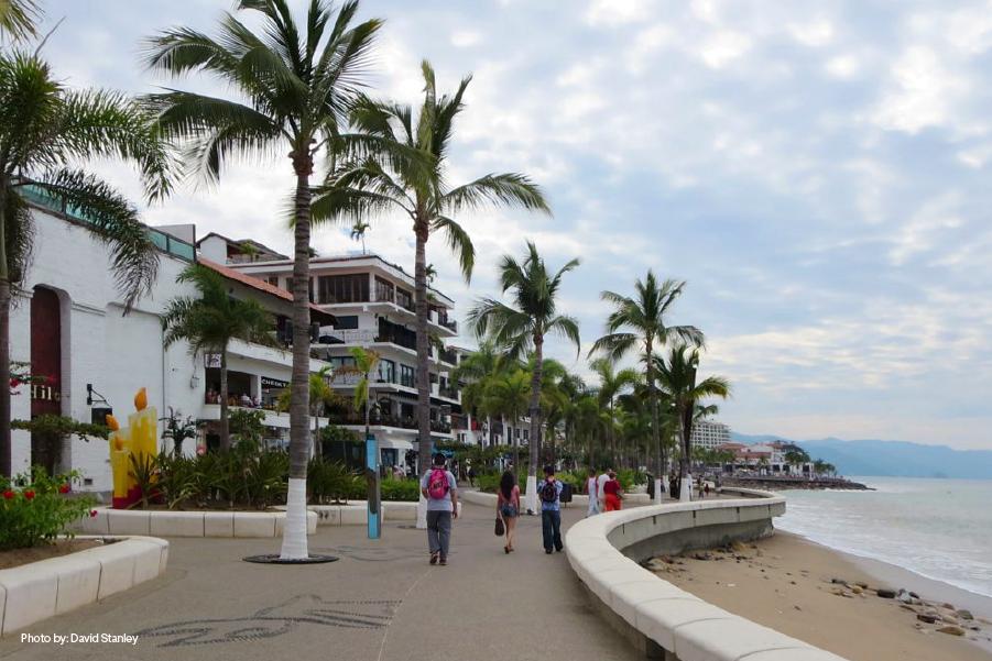 Palmeras en el malecón de Puerto Vallarta con el mar a un lado
