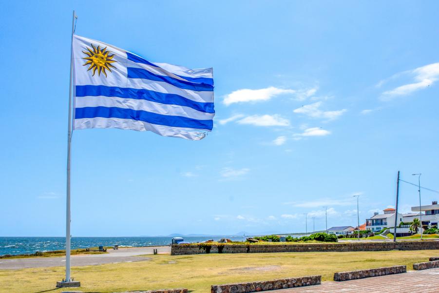 Vista desde el Mirador del Pabellón Nacional, en Punta del Este, Uruguay