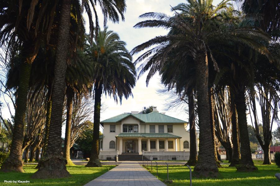 Camino de entrada con palmeras del Museo Regional de la Araucanía, Temuco