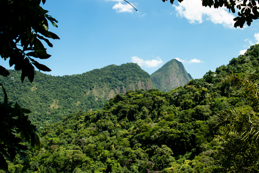 Vista del Pico Diego de Ocampo, con abudante vegetación verde, en un día soleado.