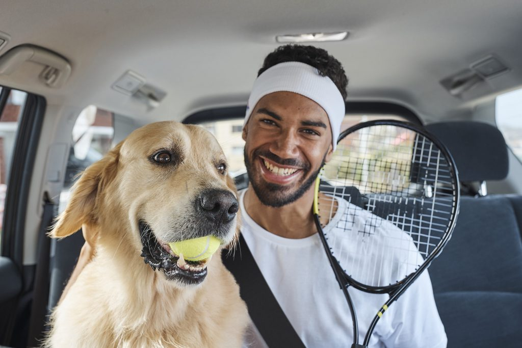 Uber Pet A Ride For All Paws Uber Blog
